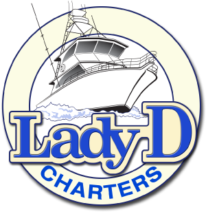 Lady D Charters